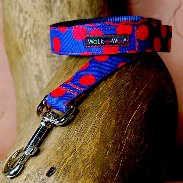 Polka Dot Lead | Red on Blue - Peticular