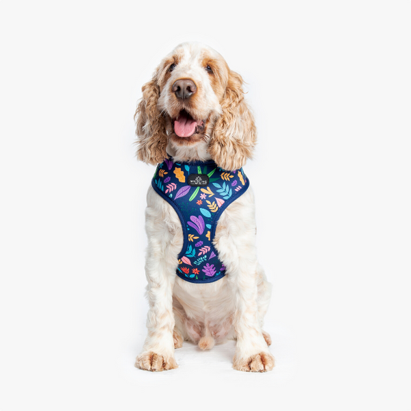 Wildling Pet Co. Flora Dog Harness | Peticular