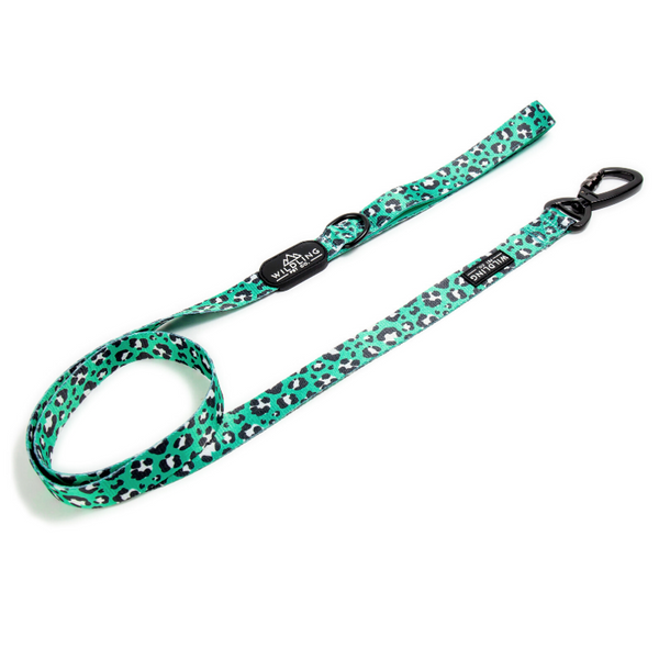 Leap Dog Leash