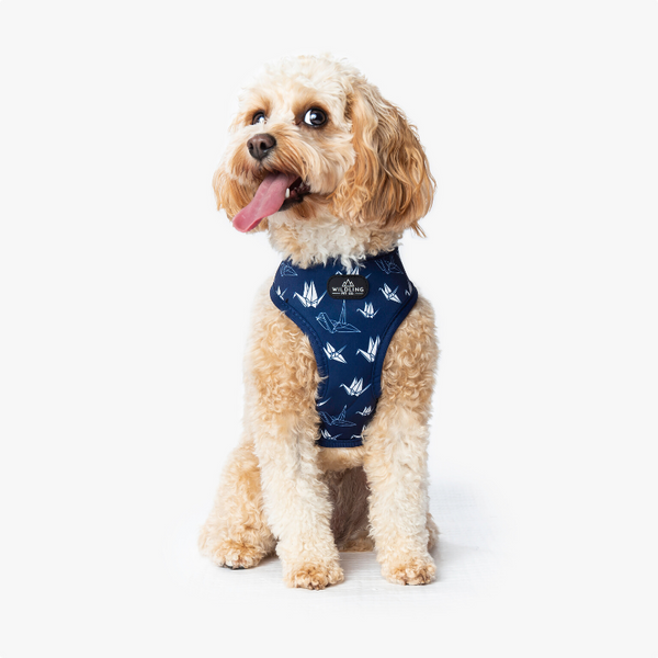 Wildling Pet Co. Tokyo Dog Harness | Peticular