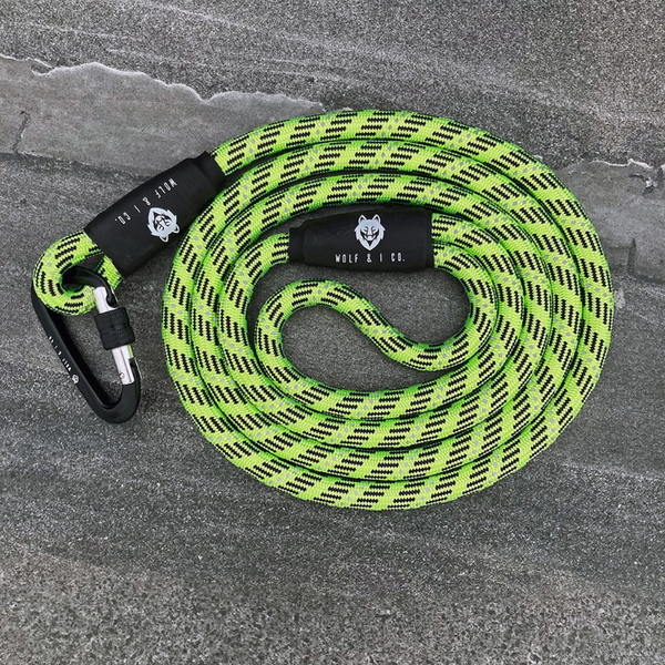 Neon Nights Reflective Climbing Rope Dog Leash