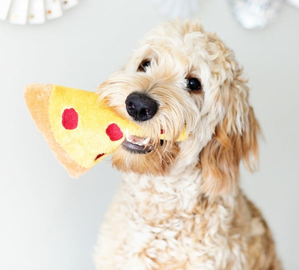 Zippy Paws NomNomz Plush Dog Toy | Pizza Slice | Peticular