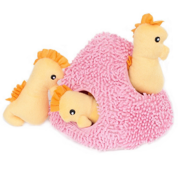 Interactive Dog Toy | Seahorse 'n Coral