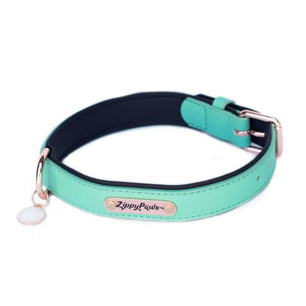 Zippy Paws Leather & Rose Gold Dog Collar | Teal | Peticular