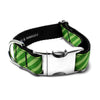MATTIE + MARGOT Apple/Lime Green Stripe Dog Collar | Peticular