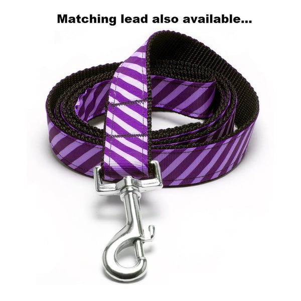 MATTIE + MARGOT Iris/Purple Stripe Dog Collar | Peticular