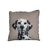 Mog & Bone Throw Cushion | Dalmatian | Peticular