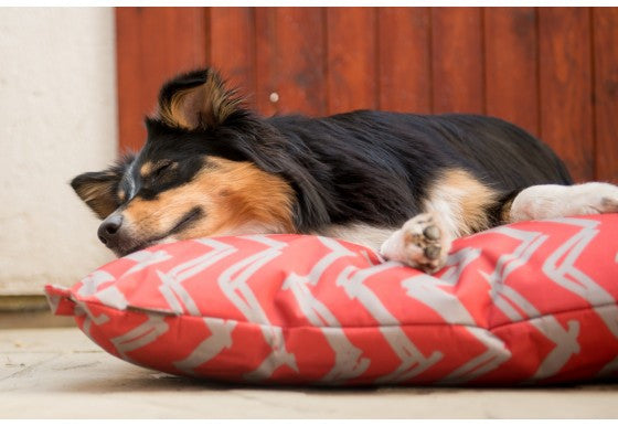 P.L.A.Y Outdoor Pet Bed | Red Chevron | Peticular