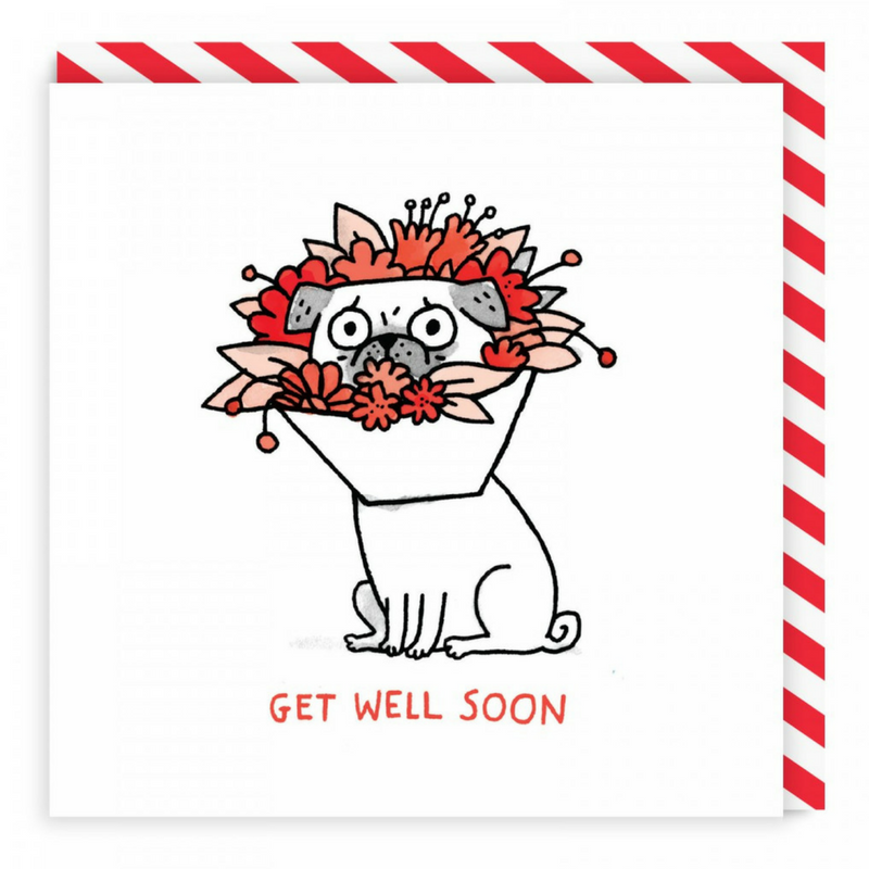 Vevoke Get Well Card | Get Well Soon Pug | Peticular