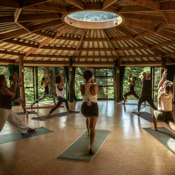 BAREFOOT RETREATS LAUNCHES A SERIES OF DAY RETREATS