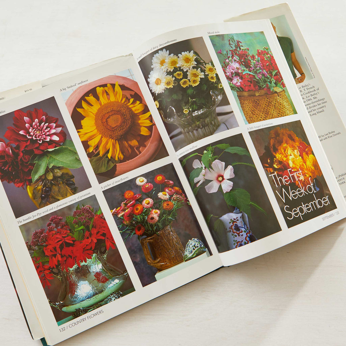 Lee Bailey's County Flowers. Best flower gardening bible. Covers perennial plants, flower beds, flower bulbs & flower planters. Best gardening guide.