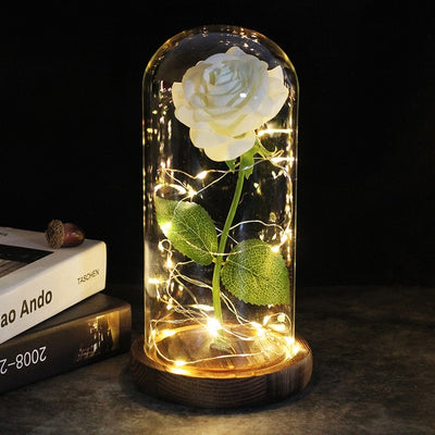 Beauty And The Beast Rose In Glass Dome Hotitemdeals