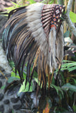 N60- New Model Brown natural Feather Headdress / Warbonnet.