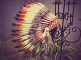 N21- From 5-8 years Kid / Child's: white swan feather Headdress 21 inch. – 53,34 cm.