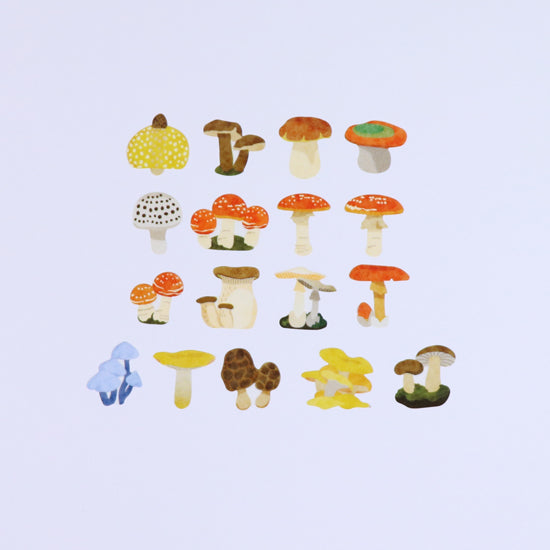 BANDE Fungi Mushrooms BDA 305 Washi Paper Sticker Roll