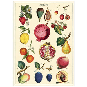Cavallini Poster Wrap - Fruit 2
