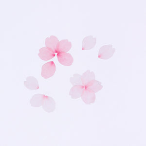 BANDE Cherry Blossom BDA 218 Washi Paper Sticker Roll