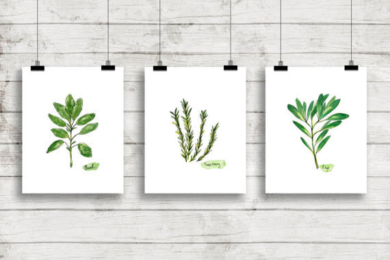 Fresh Herbs Botanical Green Prints Bring Natural Inspiration Indoors
