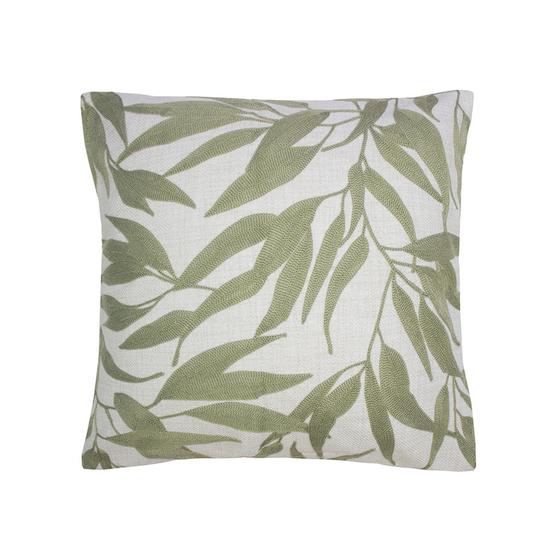 Ironbark Cushion Woodrose