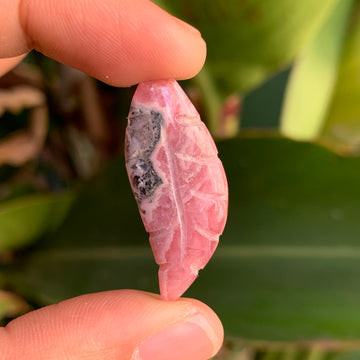 Rhodochrosite Leaf/Feather #37