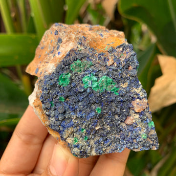 Azurite with Malachite #62