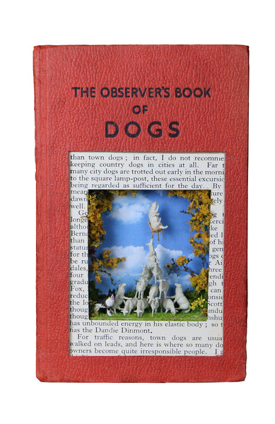 The Observers Book of Dog