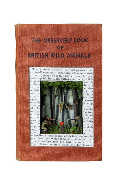 The Observers Book of British Wild animals