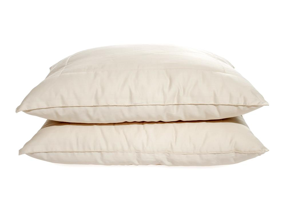 OMI 100% Certified Organic Spiraled-Wool™ Pillow