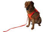 Duty Apparel Hi Vis Dog Vest