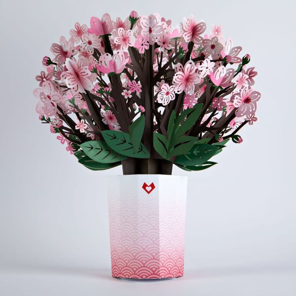 POP UP CHERRY BLOSSOM BOUQUET