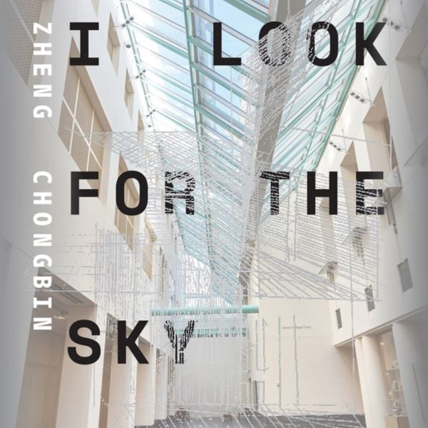 I Look for the Sky