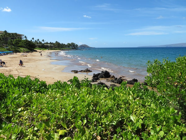 Visiting Maui in Summer 2018? Don't Miss Out on the Best Beaches!