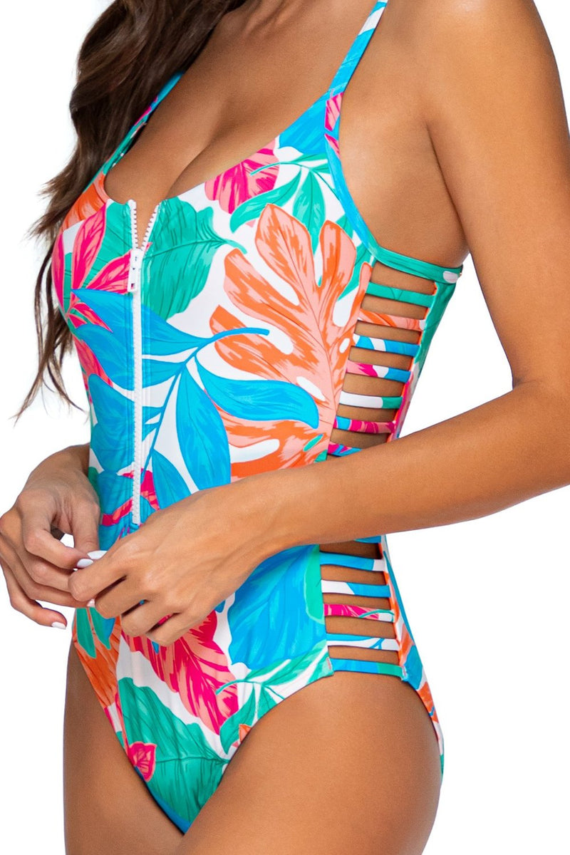 Sunsets Tropicalia Borderline One Piece