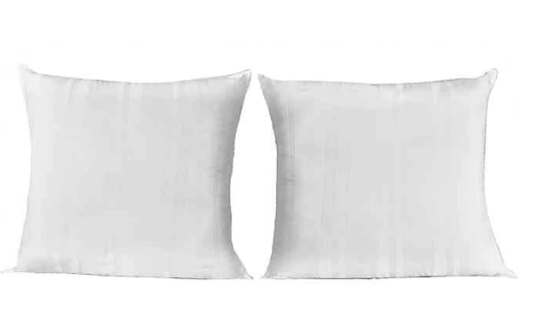 SALT™ European Pillow (Set of 2)