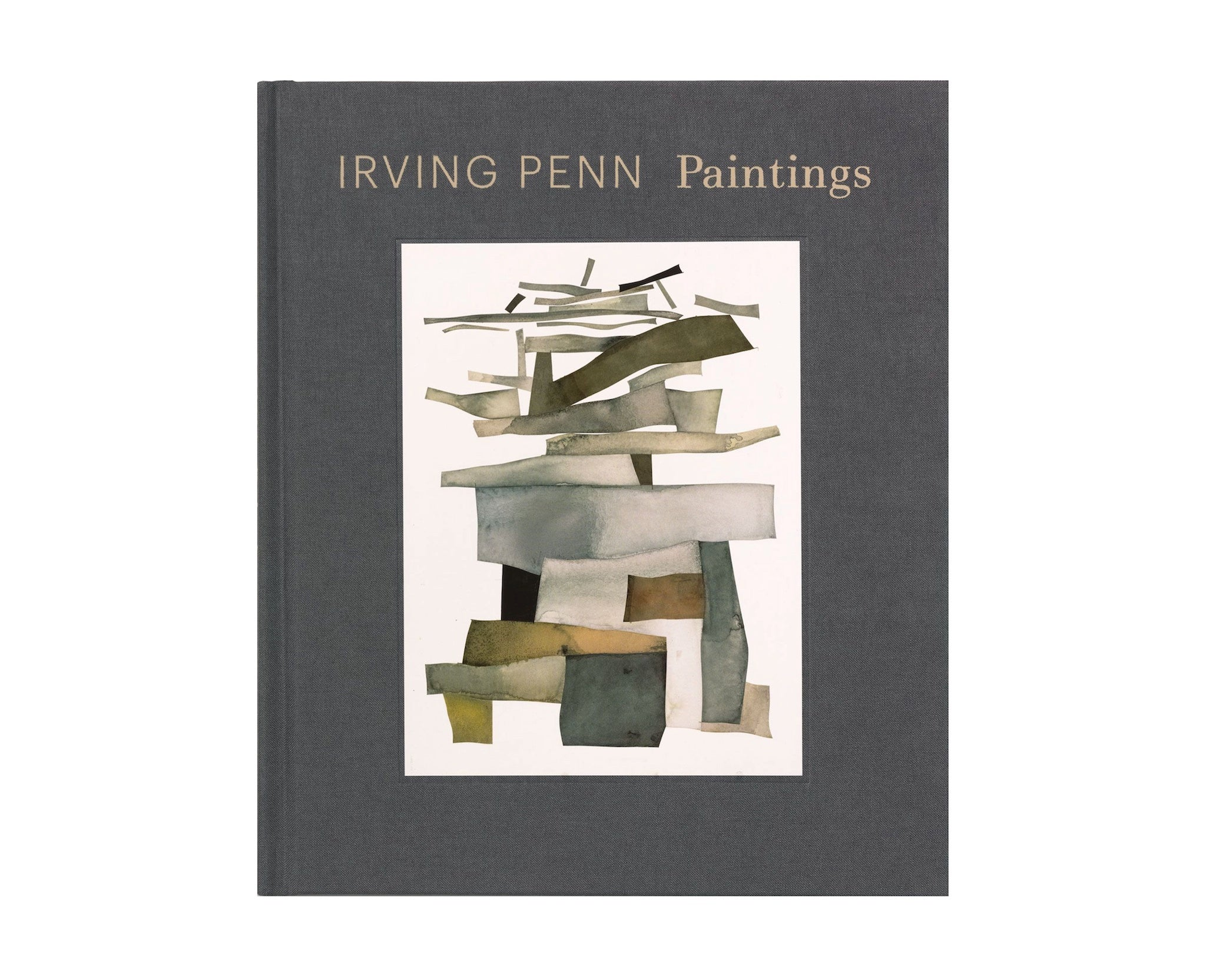 Books Irving Penn: Paintings