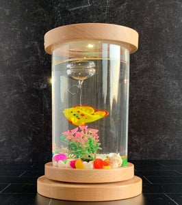 Lighted Desk Top Fish Aquarium