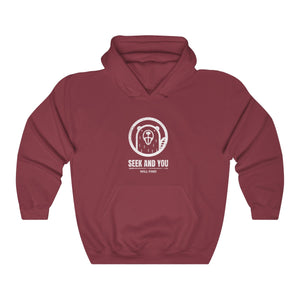Seek And You Will Find Hooded Sweatshirt