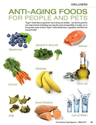 Super foods for dogs and humans