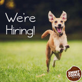 smart cookie barkery is hiring in Denver, CO