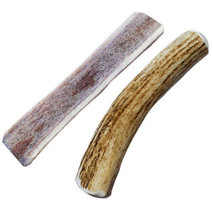 Smart Cookie Elk Antler Dog Chew