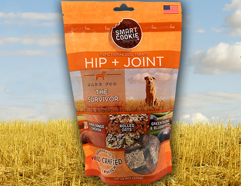 The Survivor: Hip + Joint Dog Treats