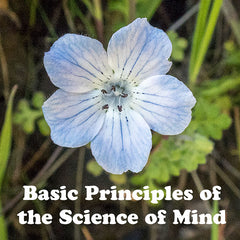 Class:  Basic Principles of the Science of Mind (Beyond Limits Equivalent)