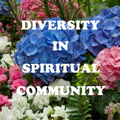 Class:  Diversity in Spiritual Community — MINISTERS AND PRACTITIONERS ONLY
