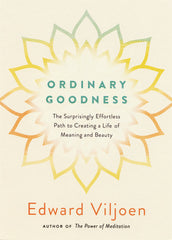 Ordinary Goodness by Edward Viljoen