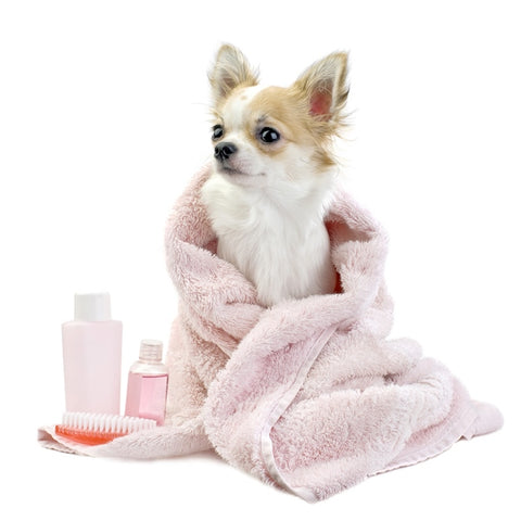 Dog Shampoos, Dog Conditioners, Dog Cologne
