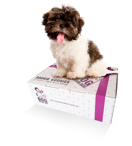 Puppy Gift Box - Puppy Toys, Treats & Puppy Grooming Products