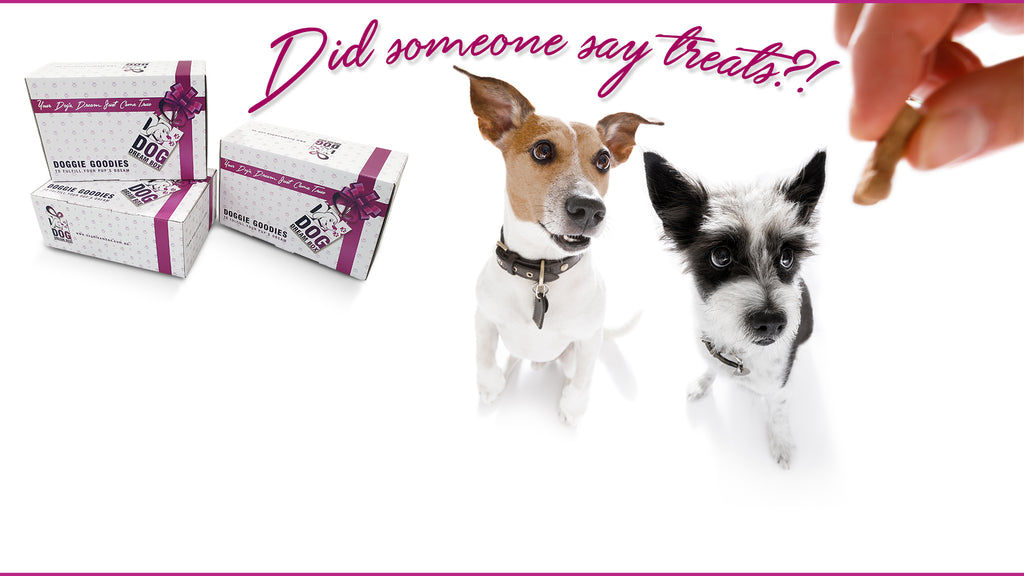 Dog Treats Box - Australia made Dog Treats