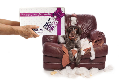 Durable & Tough Dog Toys for Heavy and Hyperactive Dog Chewers