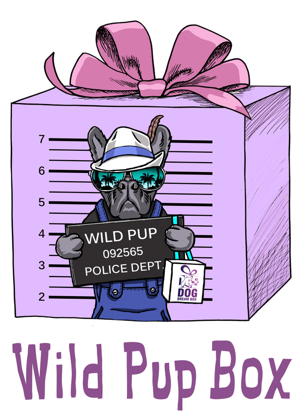 Wild Pup Gift Box - Super Tough Durable Dog Toys & Treats for Chewers