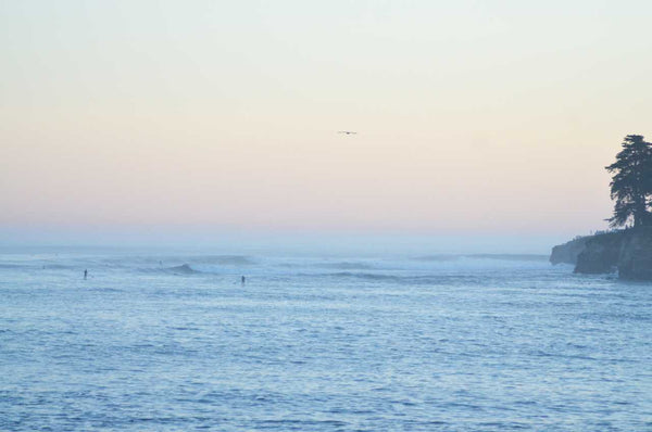 Dusk in Santa Cruz Photography Print | Limited Edition